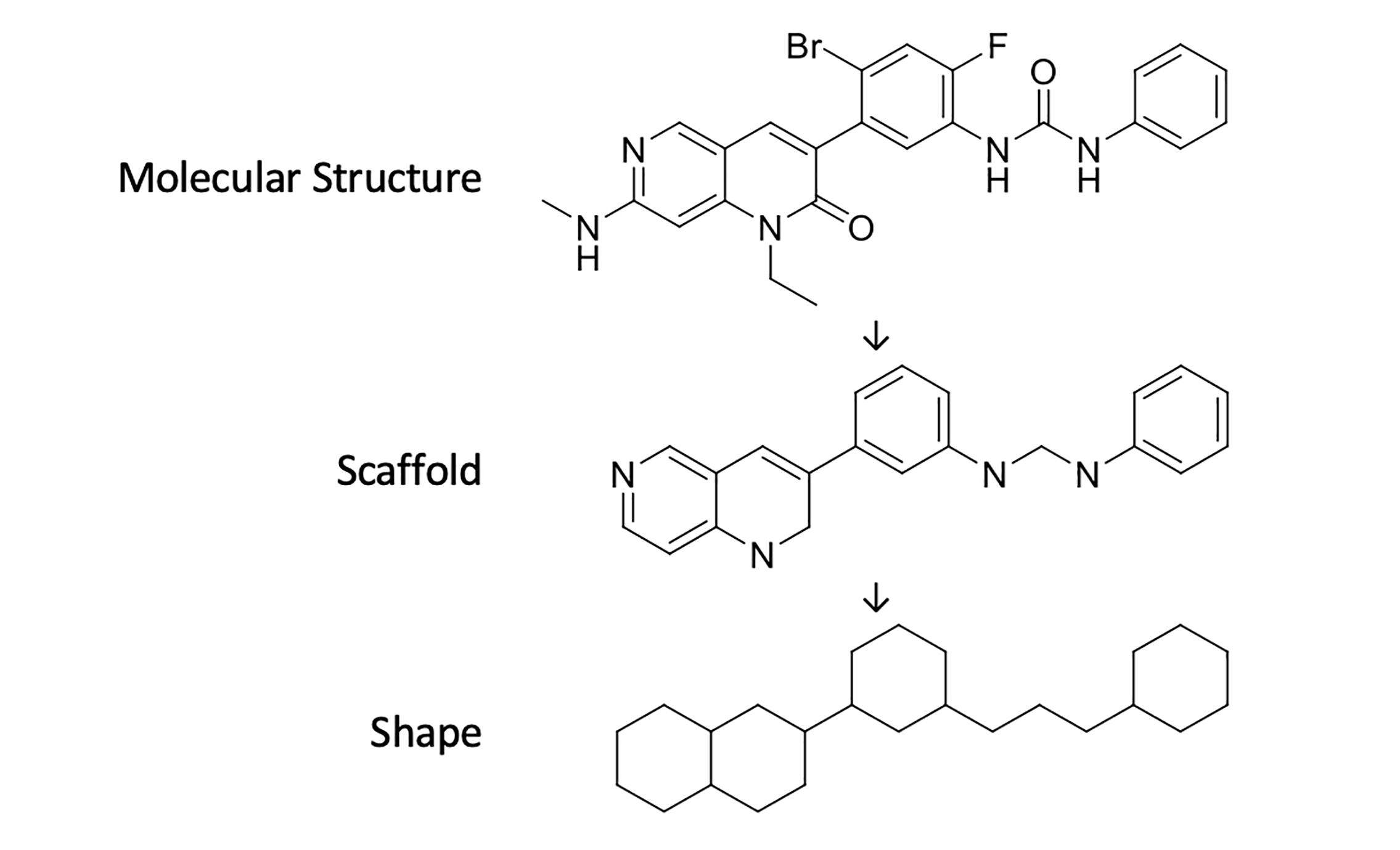 Example definition of drug shapes and scaffolds