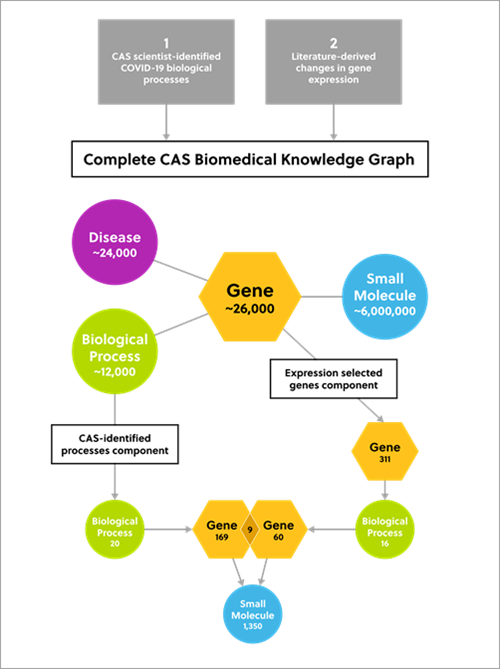 Data components used to construct CAS knowledge graph