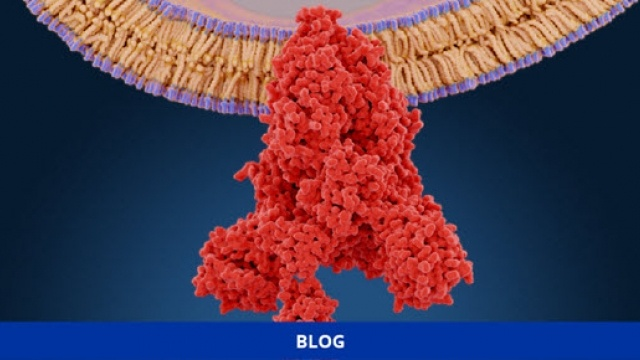 Covid viral spike-protein structure Thumbnail