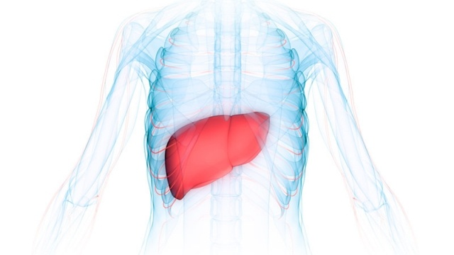 Nonalcoholic steatohepatitis Connections driving emerging market innovation