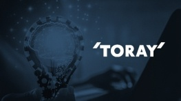 Toray Industries case study thumbnail
